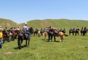 Борьба на лошадях